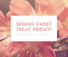 Are you signed up for our e-newsletters and a chance to win FREE candy for our Spring Sweet Treat Fridays? Enter your email and check our Facebook page on Fridays to see if you won! http://on.fb.me/1BJI1wU