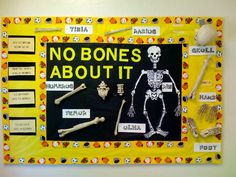 Nice board of info ...COULD make interactive by adding names of bones & velcro pieces & have students label the bones