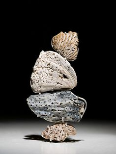 Jenna Pierson, Coral Rock Brooch, 2013, brooch, coral rock, silver, steel, 4 x 2 x 0.5 inches, photo: Stephen Wilson
