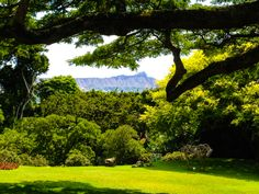 Gorgeous view of Diamond Head from Spalding House - Honolulu Museum of Art.