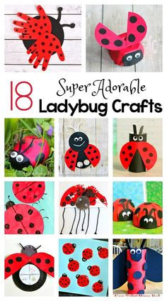 18 Adorable Ladybug Crafts for Kids including ladybugs made from egg cartons toilet paper rolls cupcake liners paper plates and more! Perfect for an insect gardening or bug unit or for spring and summer! Craft Activities, Preschool Crafts, Kids Crafts, Preschool Garden, Preschool Classroom, Summer Crafts For Kids, Art For Kids, Summer Kids, Summer Art