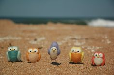 owls on the beach!