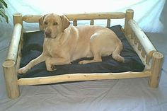 Luxury Log Dog Beds and Other Log Furniture - Custom Crafted Pet Feeders Rustic Log Furniture, Dog Furniture, Western Furniture, Furniture Design, Log Home Interiors, Log Bed, Little Cabin, Pet Feeder, Cool Pets