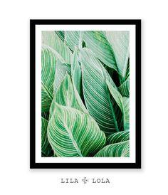 Tropical Leaf Print Tropical Leaf Wall Art Plant Leaf by LILAxLOLA