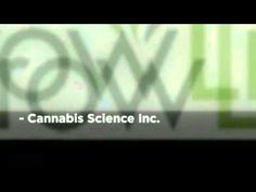 Visit this site http://www.medicalmarijuanastocks.org/penny-stocks-to-buy/ for more information on Awesome Penny Stocks. The fascinating part about these Awesome Penny Stocks is that they are all benefiting greatly from the legalization of marijuana. With the growing effort to legalize cannabis even further, this may mean that these same companies turn into the most popular brands in the country.