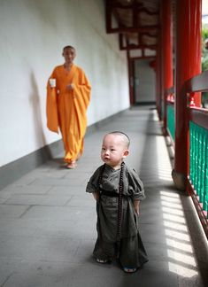 Cute Little Monk in SE China Goes Viral Online