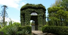 Botanical Garden (Photo: ©Ricardo Zerrener/RioTur)