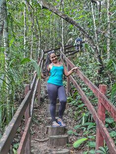 trilha do parque Four Square, Leather Pants, Brazil, Places, National Parks, Leather Jogger Pants, Lederhosen, Leather Leggings