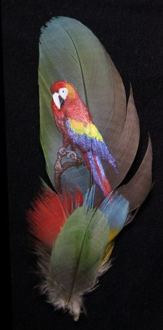 Macaw feather Painting by ~Marahuta on deviantART Feather Painting, Feather Art, Bird Feathers, Painted Feathers, Felt Pictures, Feather Crafts, Native American Artists, Wildlife Art, Bird Art