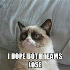 Grumpy cat sports football soccer baseball little League tennis volleyball