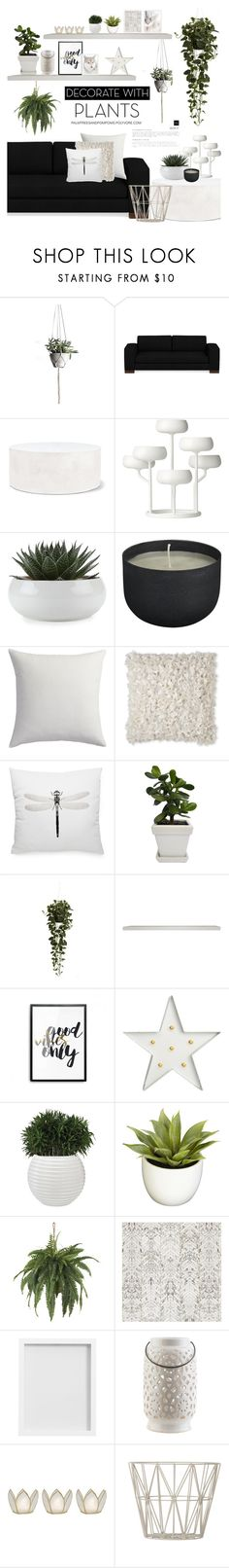 """""""Grow a Little: Planters"""" by palmtreesandpompoms ❤ liked on Polyvore featuring interior, interiors, interior design, home, home decor, interior decorating, Williams-Sonoma, Seasonal Living, iittala and CB2"""