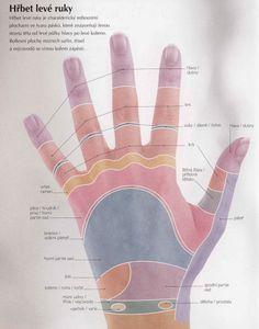 energie pro naše tělo a duši | Reflexní terapie Nordic Interior, Palmistry, Healthy Lifestyle Tips, Tai Chi, Diy Beauty, Reiki, Pilates, Skin Care, Exercise
