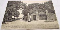 Aldwick Road near Bognor Sussex Antique Vintage Postcard Postcards, World, Antiques, Painting, Vintage, Art, Antiquities, Art Background, Antique