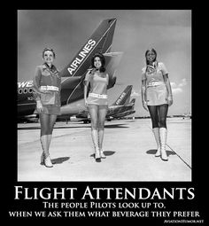 Life of a Flight Attendant Explained With Memes - Aviation Humor