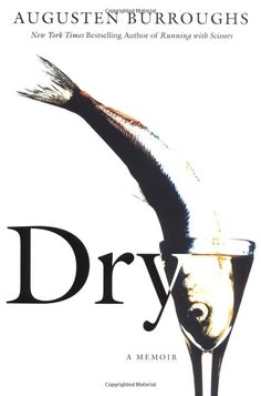 Dry, by Augusten Burroughs