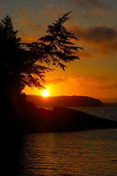 Tofino Beach Sunset