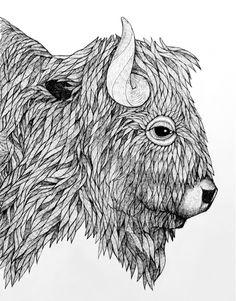 Bison - North America on Behance