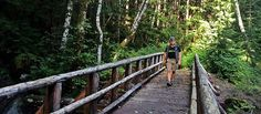 Pick your adventure! Outdoor Enthusiast Itinerary | Bellevue, Washington