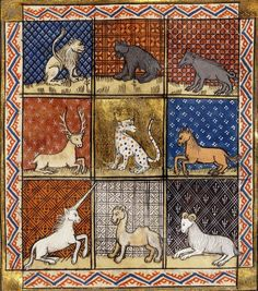 Remarkably realistic for medieval illuminated beasts, which were often fabulous admixtures of fantasy and fur