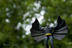 Figurine Batman Garden Sculpture, Photos, Batman, Outdoor Decor, Home Decor, Life, Homemade Home Decor, Pictures, Decoration Home