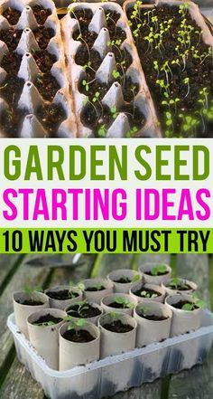 Growing things is something most of the people love to do. If you are a gardener or thinking to start your own garden as a beginner here are some wonderful ideas you must try. # Gardening for beginners GARDEN SEED STARTING IDEAS: 10 Ways You Must Try Seed Starting, Starting A Garden, Starting A Farm, Greenhouse Gardening, Container Gardening, Mini Greenhouse, Greenhouse Ideas, Portable Greenhouse, Hydroponic Gardening