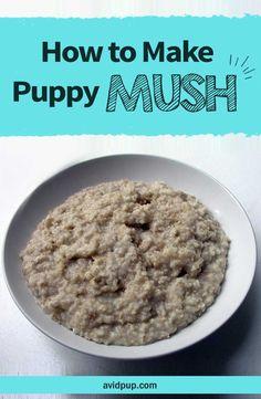 How to Make Puppy Mush .. (easy recipe)