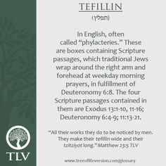 TLV Glossary Word of the Day: Tefillin #tlvbible