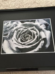 Black & white rose, flower photo, rose in the rain, flower picture, gifts for her, zen picture, nature by Frogkissers on Etsy https://www.etsy.com/listing/259011142/black-white-rose-flower-photo-rose-in