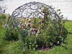 College students made a cool igloo-trellis out of bike tire rims!