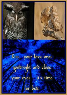 Kiss your love ones goodnight and close your eyes - it's time for bed.