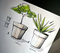 "585 Me gusta, 8 comentarios - Fran Molina (@_franmolina) en Instagram: ""Flower pots!  . . . #sketch #sketching #idsketch #idsketching #draw #drawing #industrialdesign…"""