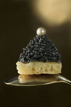 Caviar perlé - Copyright © Caroline Martin   | Lily Pond Services LLC. Lifestyle Management, Select Domestic Staffing, Concierge, & Creation of Exclusive Experiences. NYC | South Florida | The Hamptons