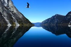 took it on my recent trip through the norway's fjords..    just amazing!