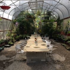 Dig Nurseries Nurseries, Plants, World, Baby Rooms, Child Room, Plant, Babies Nursery, Room Kids, Planting