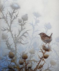 """""""Winter Wren"""" by Mike Stinnett. Acrylic on Watercolor Paper. Prints are available on Fine Art America.com"""