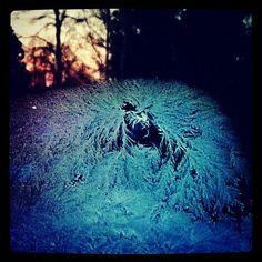#jääkuningatar #icyqueen #ivequeen #snowqueen #lumikuningatar... #jäätaide matkii #DidierComes #noitaa sarjakuvaa