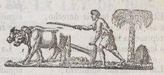 Xilografía en cabecera un hombre arando el campo con dos bueyes.