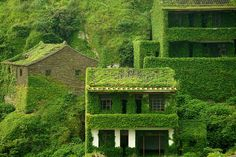 忘れ去られた緑園都市!神秘の廃村がラピュタにしか見えない - Find Travel