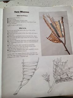 Twig Weaving