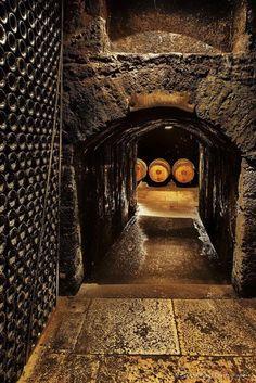 wijn kelder...