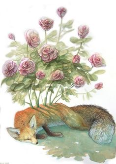 The dream of the fox