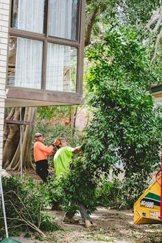 Do you have a unsightly tree on your property? Contact us at 07 3999 9851 for tree removal and lopping service.  #treelopping #treetrimming #treepruning