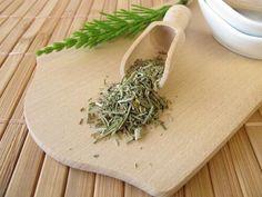 Cum să folosești ceaiul de coada calului pentru slăbire - Doza de Sănătate