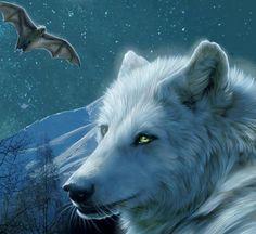 Lobos brancos!
