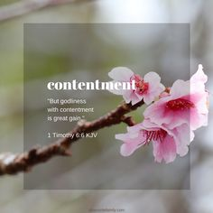 A Christian devotion on godliness with contentment being a great gain - 1 Timothy KJV Thy Word, Word Of God, Godliness With Contentment, 1 Timothy 6, Church Signs, King James Bible, Christian Devotions, Seasons Of Life, Bible Scriptures
