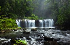 Nandroya Falls in Wooroonooran National Park, Australia