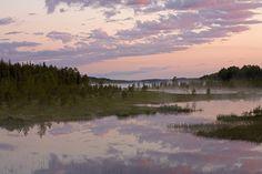 #Mist #Swamp #Beautiful #Nature in Finland