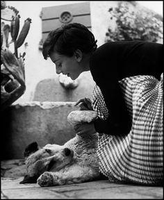 Audrey Hepburn in Rome (Philippe Halsman, 1954)