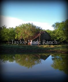 CALLING ALL HOMESTEADING OR SIMPLE LIVING BLOGS! I'm compiling a list divided by area that I'll share right here on my page. #TaylorMadeHomestead