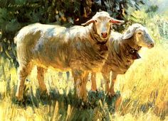 Sheep print.   I really need to contact this artist for a print.   I love these colors!